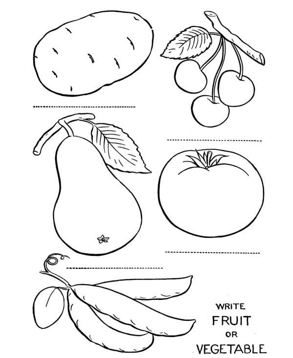 Learn Fruits Name In English Fruits Images For Kids