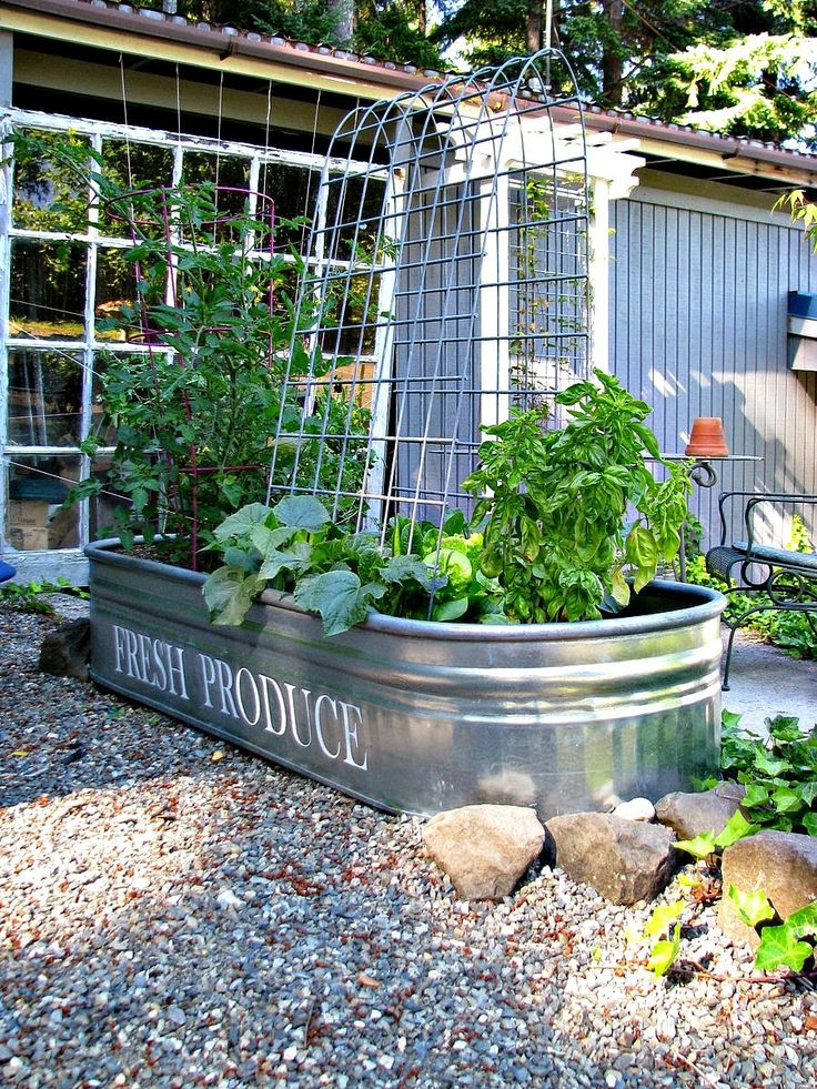 25 Best Ideas About Veggie Gardens On Pinterest Gardening