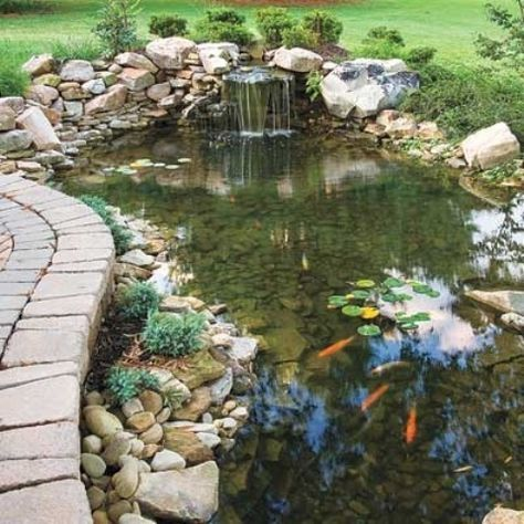 25+ best ideas about Backyard Ponds on Pinterest