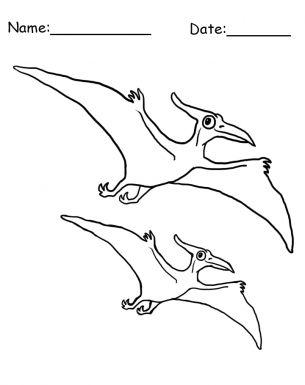 25+ best ideas about Dinosaur Template on Pinterest