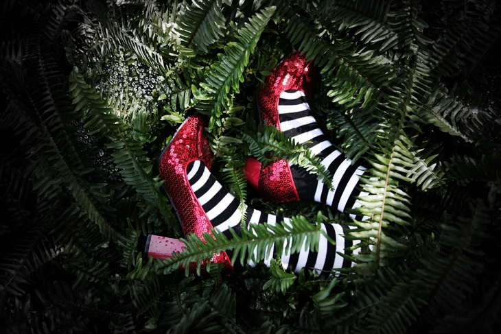 Fern Death Of A Witch Evan Taylor Tulsa OK CHRISTMAS Pinterest Trees Christmas