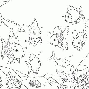 128 best images about Rainbow Fish on Pinterest