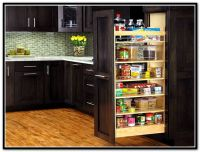 25+ best ideas about Pull Out Pantry on Pinterest