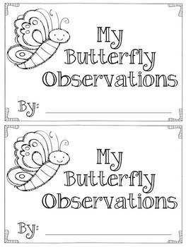 172 best images about BUTTERFLY Life Cycle on Pinterest