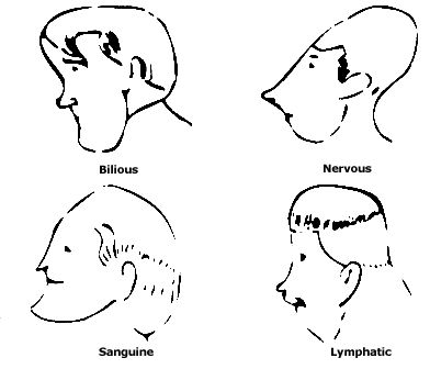 23 best images about Face Morphology/Face Reading