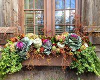 1000+ ideas about Fall Window Boxes on Pinterest | Window ...