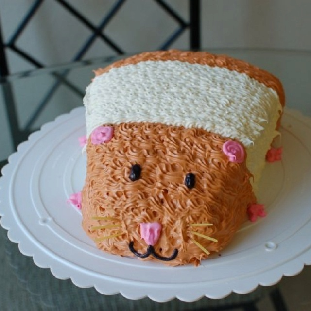 Hamster Cake Cake Decorating Pinterest Hamsters Cakes And Tops