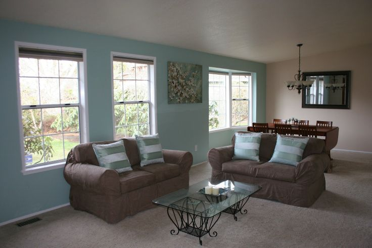 1000 Images About Living Room Accent Color On Pinterest