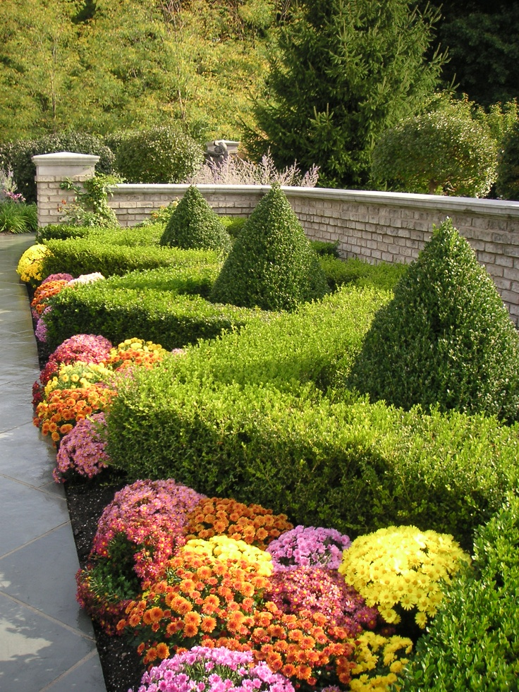 37 Best Images About Garden Ideas Hedges On Pinterest Gardens