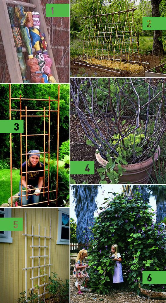 200 Best Images About DIY & Growing Food On Pinterest Gardens