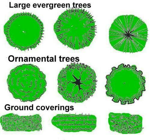 1000 landscape design