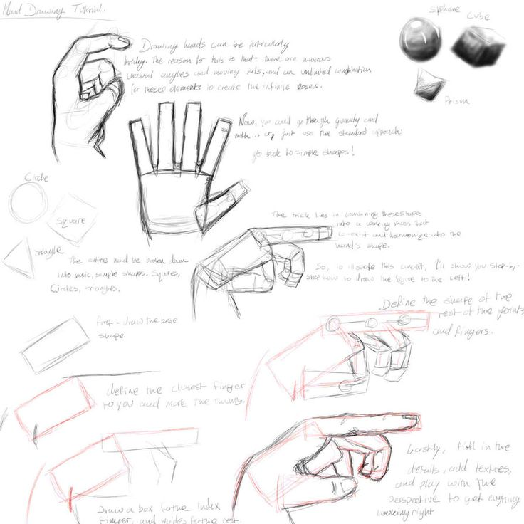 1000+ images about 7th Grade- Observational Hand Drawing