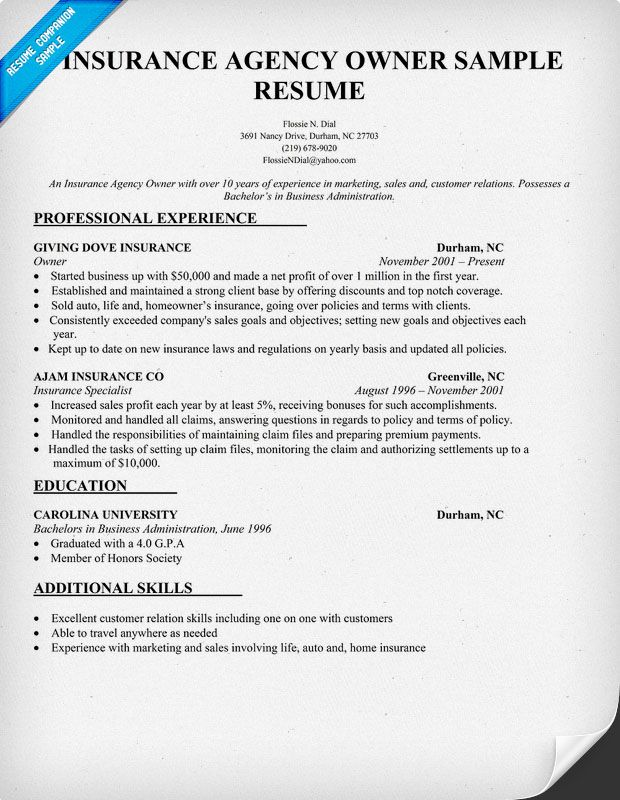 Insurance Agency Owner Resume Sample Resume Samples