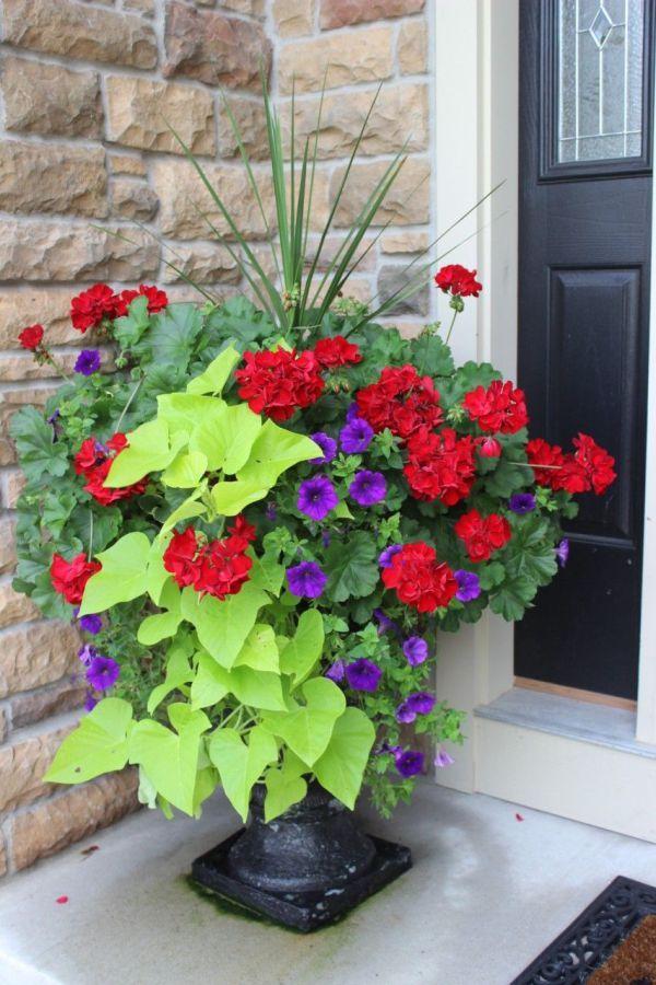 25 Best Ideas About Outdoor Flower Pots On Pinterest Outdoor