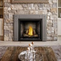 Napoleon HDX35 Starfire 35 Direct Vent Gas Fireplace ...