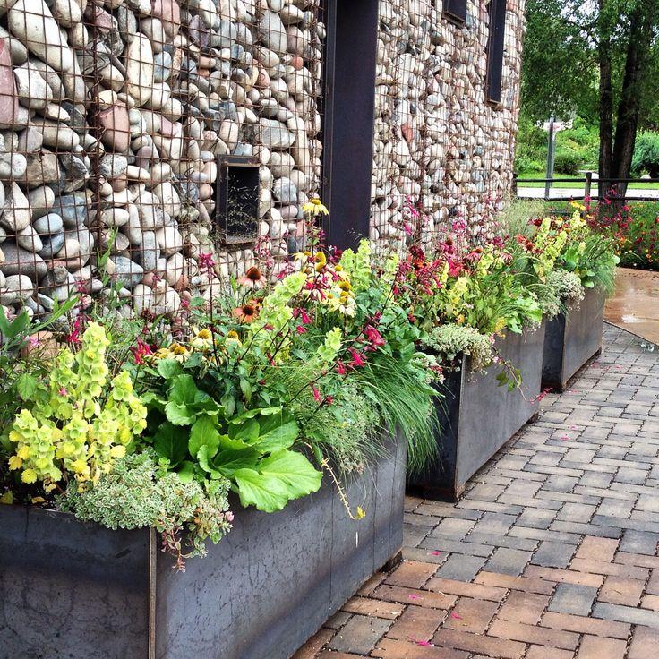 Aspen Coloradoperennials For Container Gardens Design By