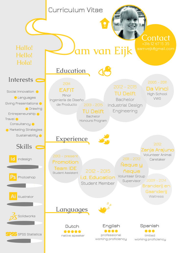 An Infographic Of My Resume Creative Curriculum Vitae
