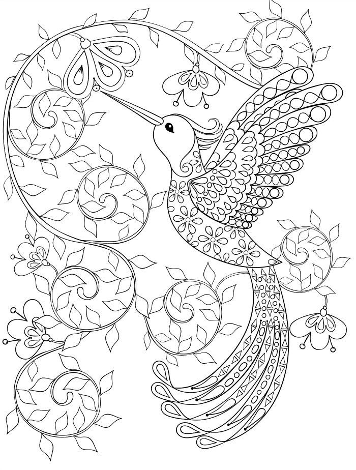 Best 25+ Secret garden coloring book ideas that you will