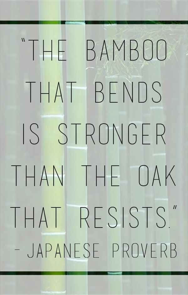 """""""The bamboo that bends is stronger than the oak that resists."""" – Japanese Proverb"""