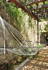 hammock under a grape arbor | Outdoor Space | Pinterest ...