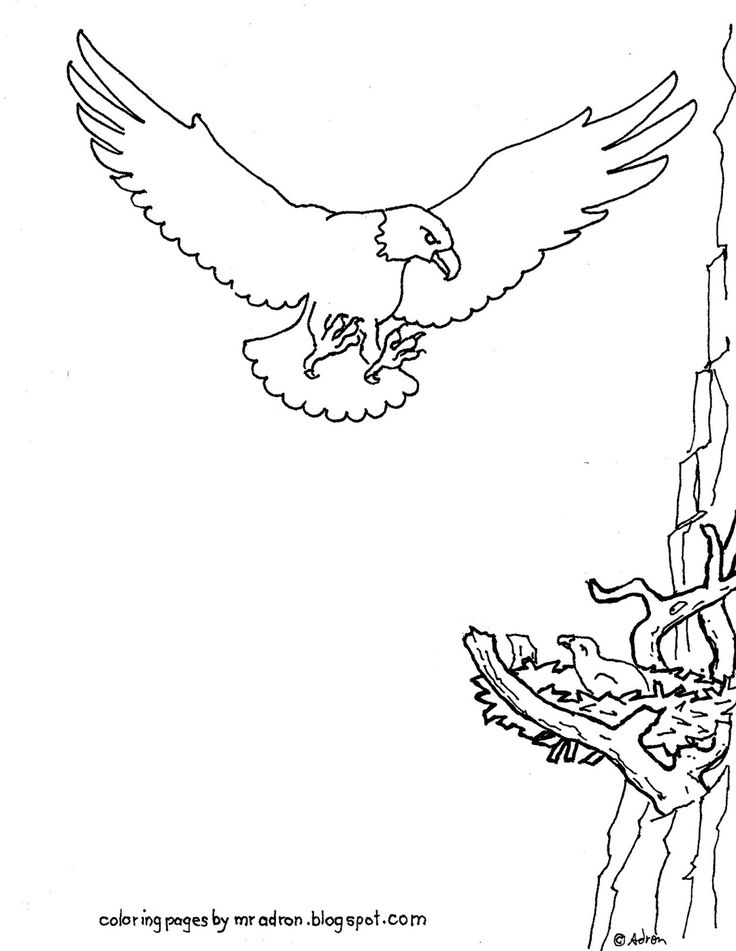 280 best Coloring Pages for Kid images on Pinterest