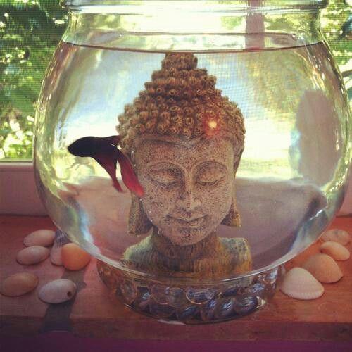 25 Best Ideas About Buddha Bedroom On Pinterest Hippie