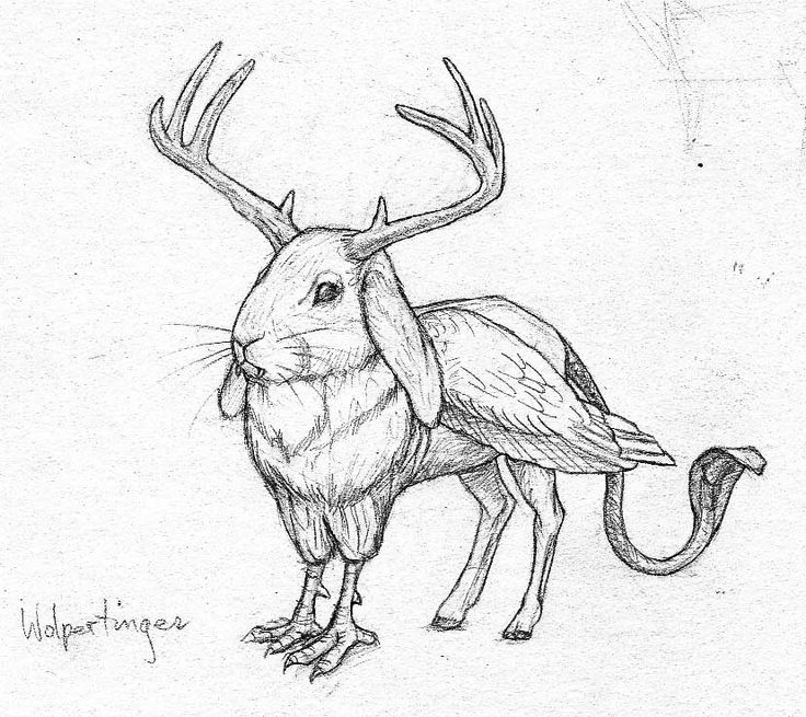 Image result for drawings of creatures created combining
