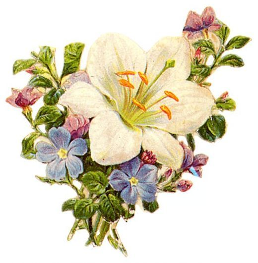 free victorian flowers and vintage
