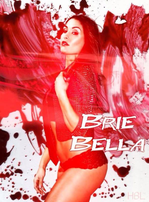 329 best nikki bella brie bella WWE CATCH DIVAS images on