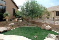 Desert Landscaping Ideas   Desert Gardens Nursery ...