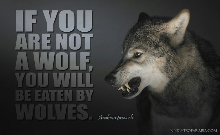 Mother And Daughter Wallpaper Quotes Quot If You Are Not A Wolf You Will Be Eaten By Wolves