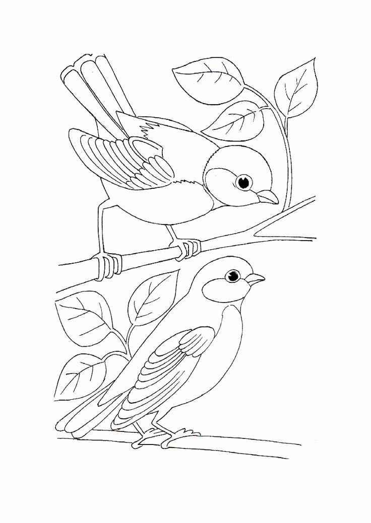 25+ best ideas about Simple bird drawing on Pinterest