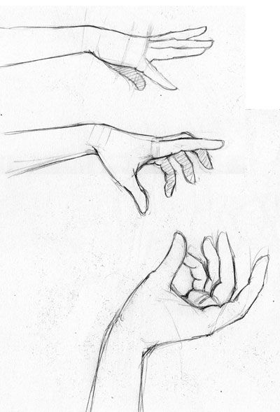 25+ best ideas about How to draw hands on Pinterest