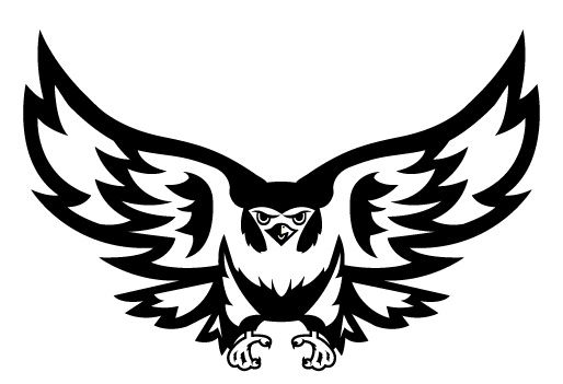 27 best images about Sokol Logos & Falcons on Pinterest