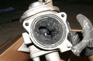 Clean Your EGR Valve | Cleanses