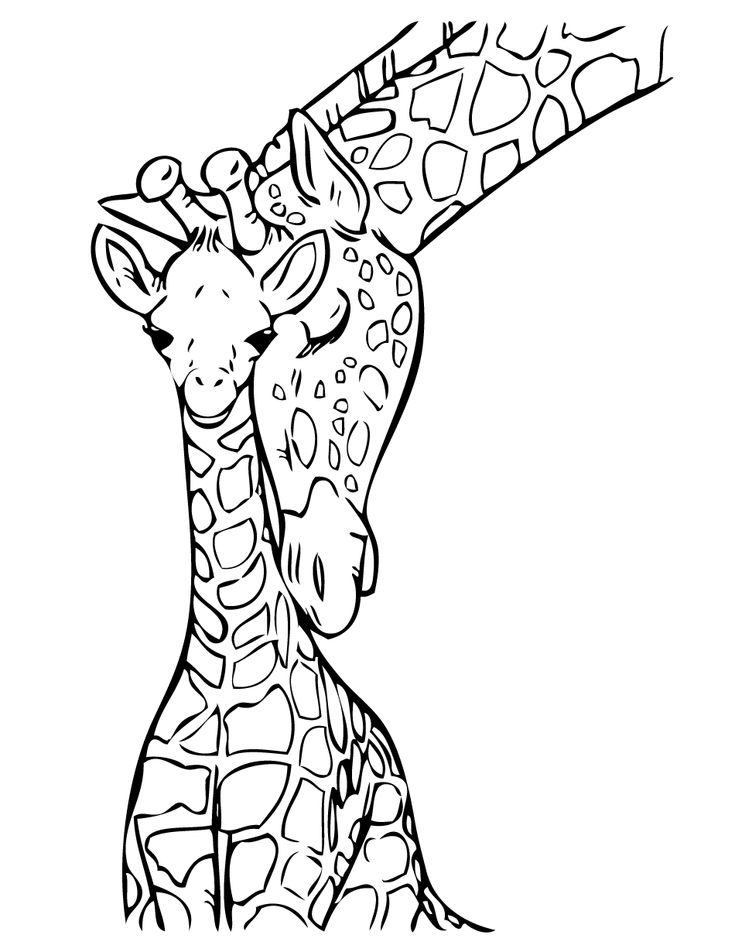 25+ best ideas about Baby giraffe tattoo on Pinterest