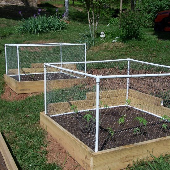 25 Best Ideas About Garden Fences On Pinterest Fence Garden