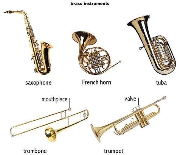 Brass Instruments In Spanish