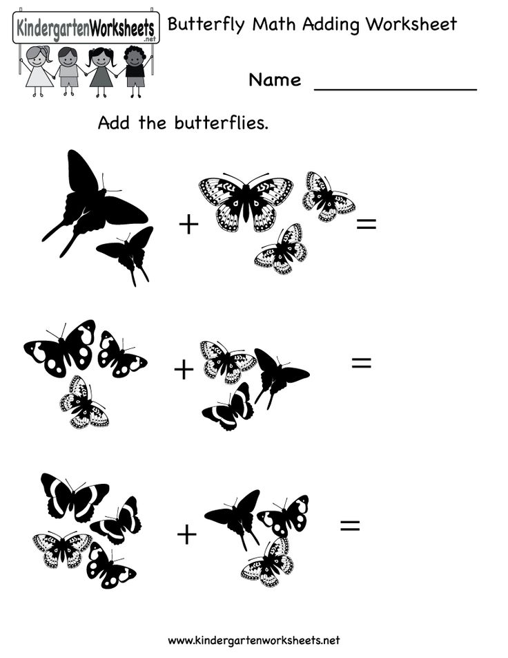 17 Best images about Butterfly Unit on Pinterest