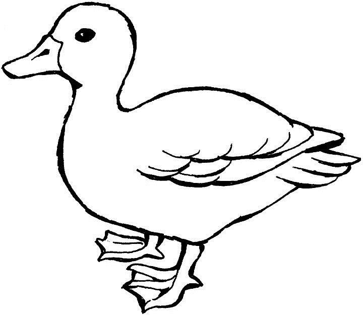Movie Duck Duck Goose Summary