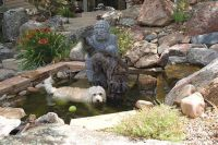 1000+ ideas about Dog Friendly Backyard on Pinterest | Dog ...