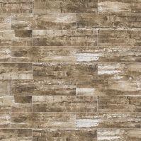 Ragno Railwood Driftwood Color Body Porcelain Floor and ...