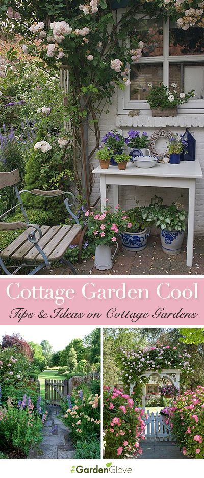 1303 Best Images About Cottage Gardens On Pinterest Gardens