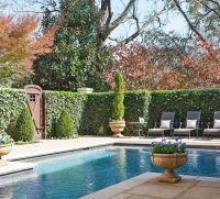 17 Best images about Pool Privacy Ideas on Pinterest ...