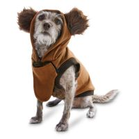 Make your dog stand out with this STAR WARS Halloween Ewok ...