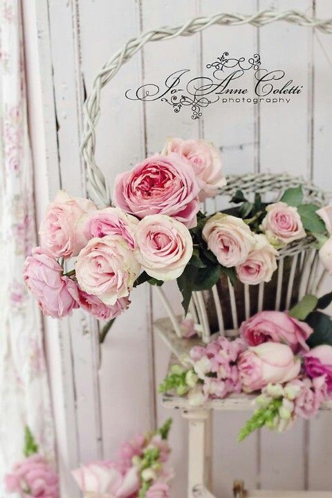1955 best images about Shabby Chic on Pinterest Shabby