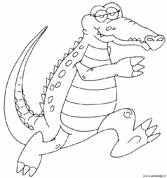 10 Best images about Krokodil kleurplaat on Pinterest