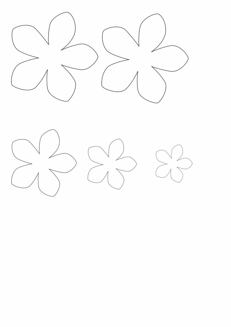 31 best images about Flower petal template on Pinterest
