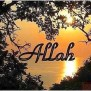 21 Best Images About Allah Wallpaper On Pinterest Judge