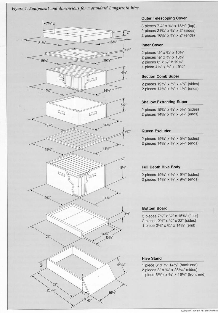 25+ best ideas about Bee hive plans on Pinterest